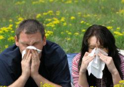 Alergije – liječenje na prirodan način